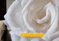XXL Blumen aus Papier