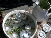 Omas Waschschüssel wird Mini-Teich