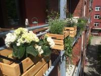 Balkonkästen Ikeahack
