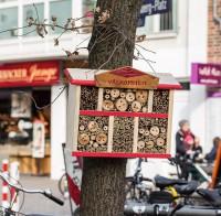 Insektenhotel: Bienchen komm herum!