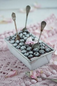 """blueberry chocolate ice cream!"""