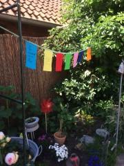 Buntes für Garten oder Balkon