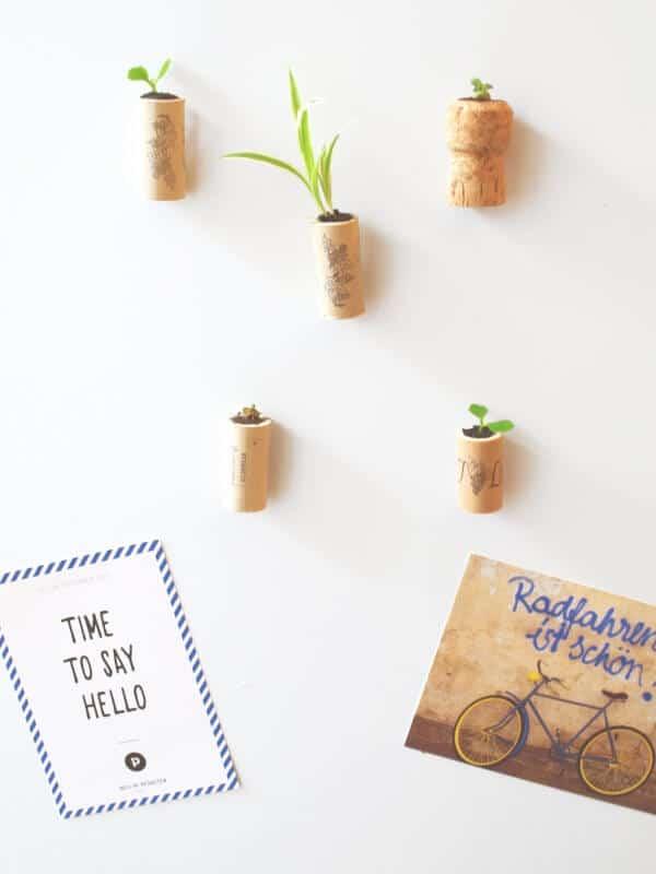 DIY Mini-Garten (Kork-Magnete)