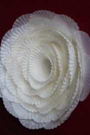 Blumen aus Pralinenförmchen