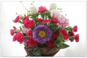 Der Blumenwahnsinn