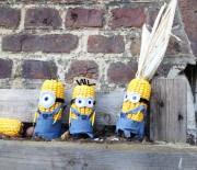 Statt Kastanienmännchen: Mais-Minions