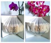 Orimoto: Buch Origami
