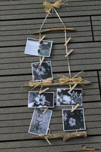 DIY: Bilderrahmen mit Naturmaterialien basteln