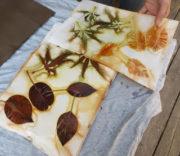 Leaf-Monoprint