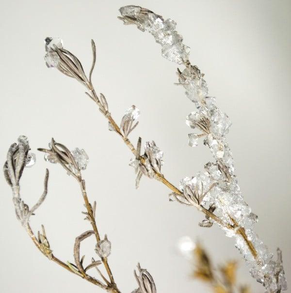 DIY - Lavendel mit Kristallen bewachsen lassen