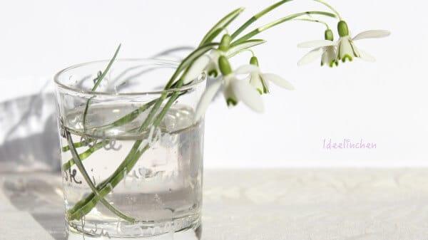Winter im Zimmer - Schneeglöckchen und DIY- Vase (Windlicht)
