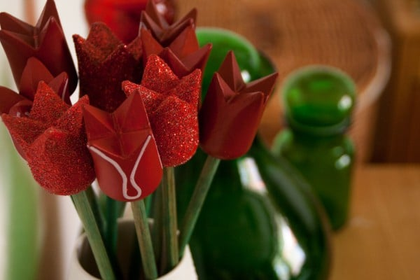 Tulipa micans...