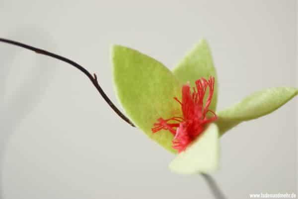 Blüten aus Filz