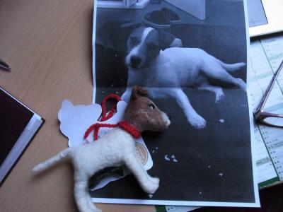 Kotbeuteltasche - Extraanfertigung nach dem Aussehen deines Hundes