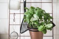 Vertikales Küchen-Utensilo