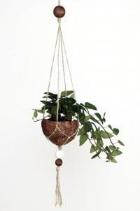 DIY Kokosnuss-Makramee-Blumenampel