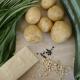 Hausgemachte Kartoffelgnocchi mit Bärlauchpesto und knackigen Zucchini