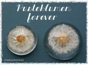 Pusteblumen-Briefbeschwerer