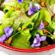 Bunter Frühlingssalat mit Wildgemüse und Veilchen