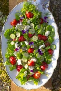 Frühlingsfrischer Salat mit Fenchel, Erdbeeren, Gurken, Schafskäse, Chia-Samen & mehr [Birgit D]