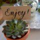 DIY-Tischkärtchen im Blumentöpfchen