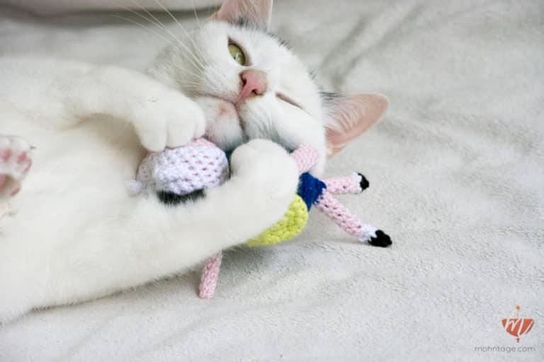 1000pcs Selbermachen Kleidung Halskette Katze Puzzle Lern Lernen Montage Toys #J