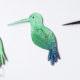 Kleiner Kolibri