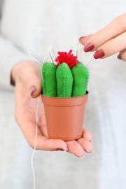 DIY Kaktus Nadelkissen