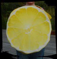 Strandtasche Zitrone und Birne - die Fruchtbombe!
