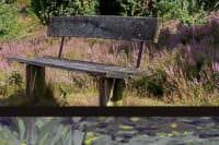 Zeichnen und Malen Lüneburger Heide 2018