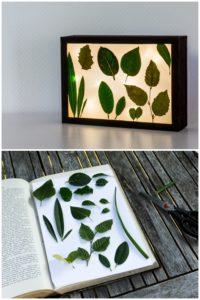 DIY Lightbox mit Sommer-Fundstücken