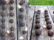 Seedbombs selber machen