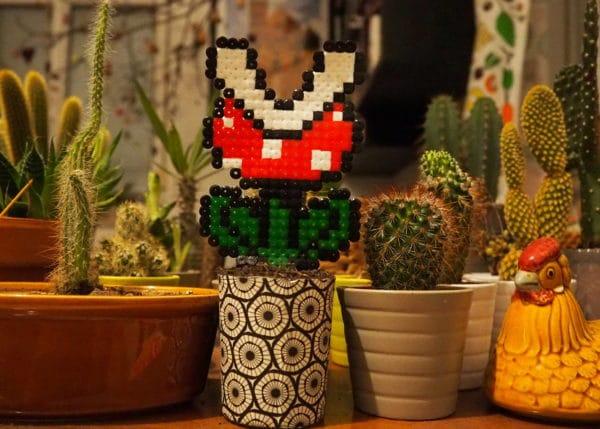 Super Mario Topfpflanzen - HANDMADE Kultur