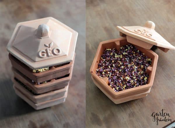 sprossen selber ziehen handmade kultur. Black Bedroom Furniture Sets. Home Design Ideas