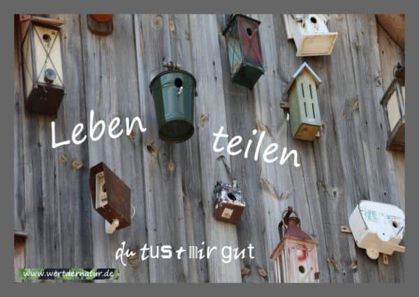 Postkartenset - Leben teilen - Geschenkidee