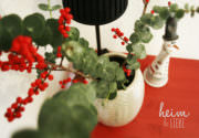 Weihnachtsdekoration mit Eukalyptus