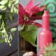 Upcyling Weihnachtsdeko: Vasen aus Glasflaschen