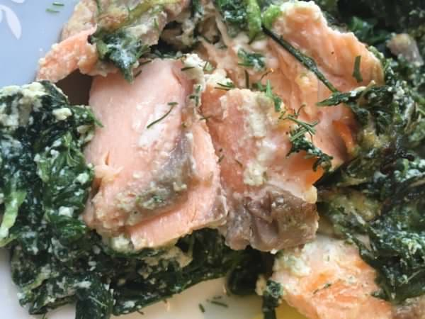 Lachs mit Spinat-Ricotta