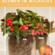 Easy Tischdeko: Blumen im Weckglas