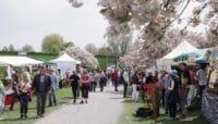 Frühlingsmarkt Plochingen
