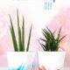 Marmorierter Blumentopf