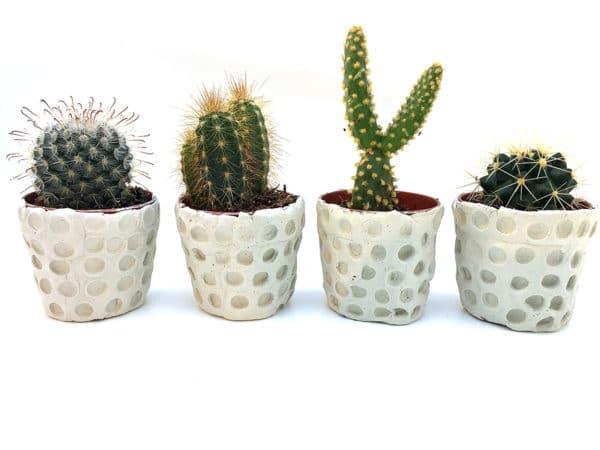 DIY – Blumentöpfe mit Modelliermasse selber machen