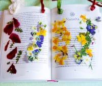Lesezeichen mit getrockneten Blüten