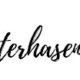 Mini-Osterhasen-Stecker {ink. Schablone}