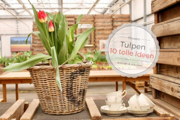 10 tolle ideen f r tulpen handmade kultur. Black Bedroom Furniture Sets. Home Design Ideas