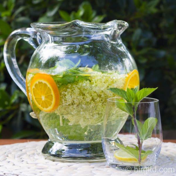 Selbstgemachtes Vitaminwasser - frischer Trinkgenuss [Birgit D]