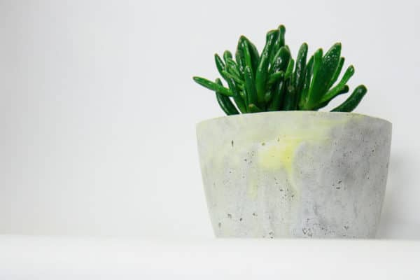 DIY mit Beton - Farbakzente setzen