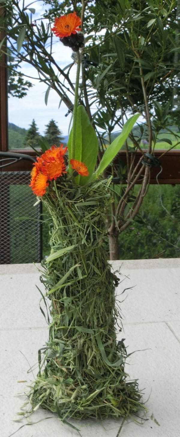 DIY, einfache, rustikale Sommerdekoration