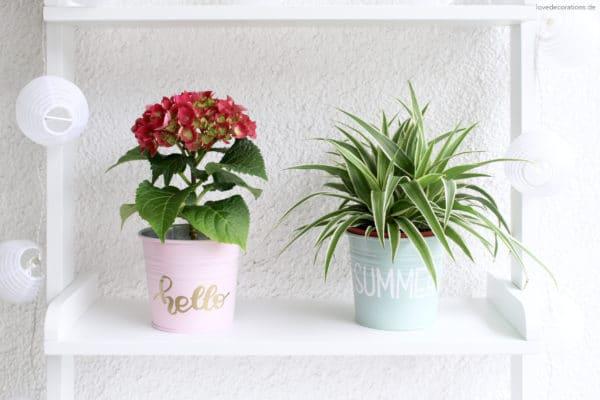 DIY Blumentöpfe mit Lettering