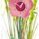 Blumenuhr basteln